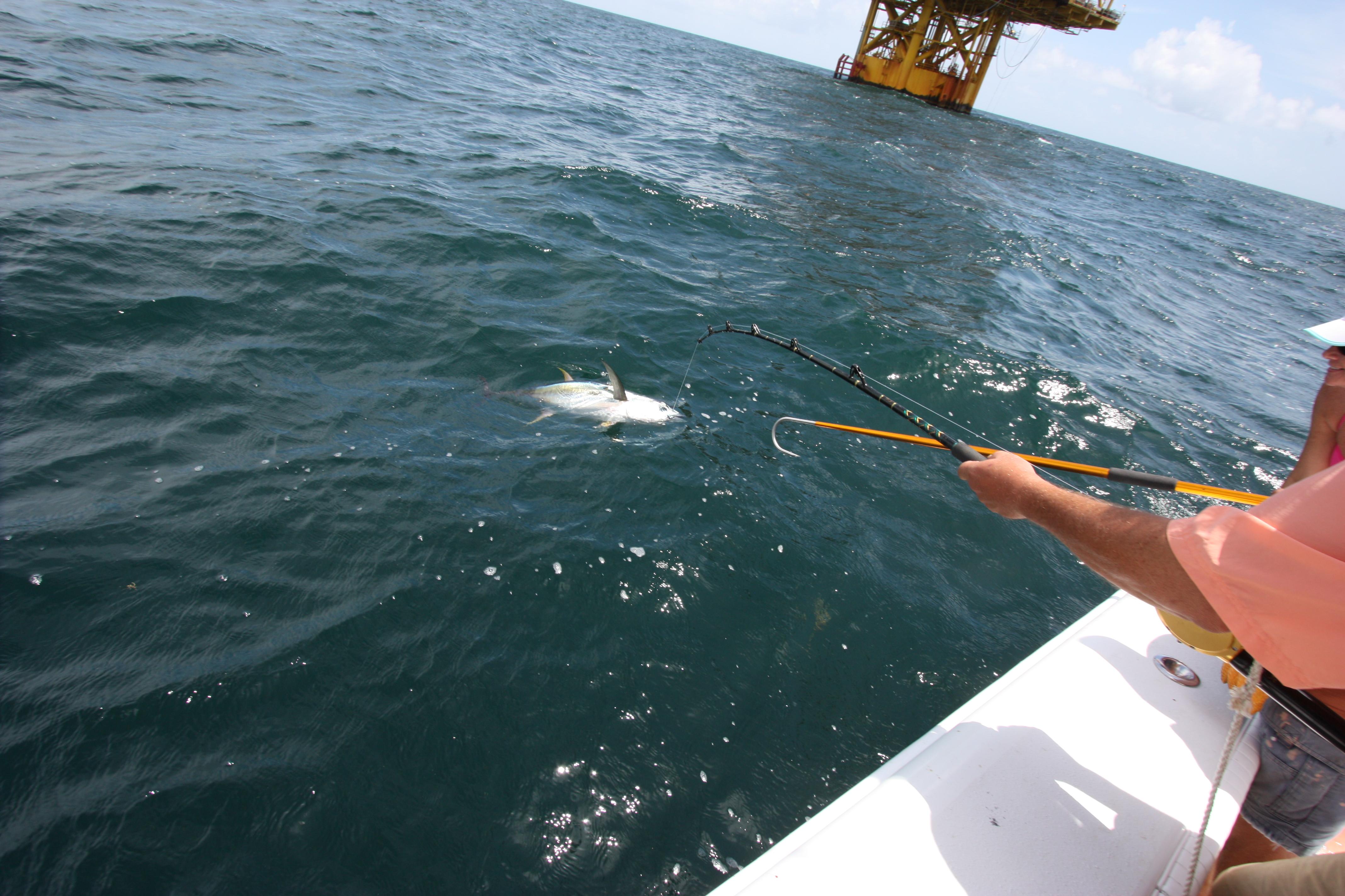 Img 0560 for Venice louisiana fishing
