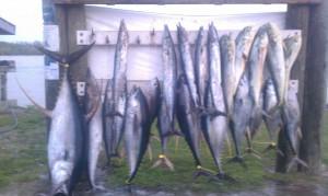 Louisiana fishing charters