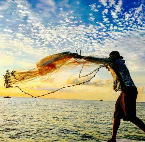 catch fish using net