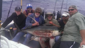 Tuna Fishing Venice LA