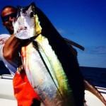 blue sea fishing