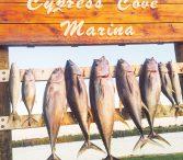 Venice Fishing Charters