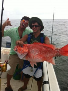 Grouper Red Snapper Fish