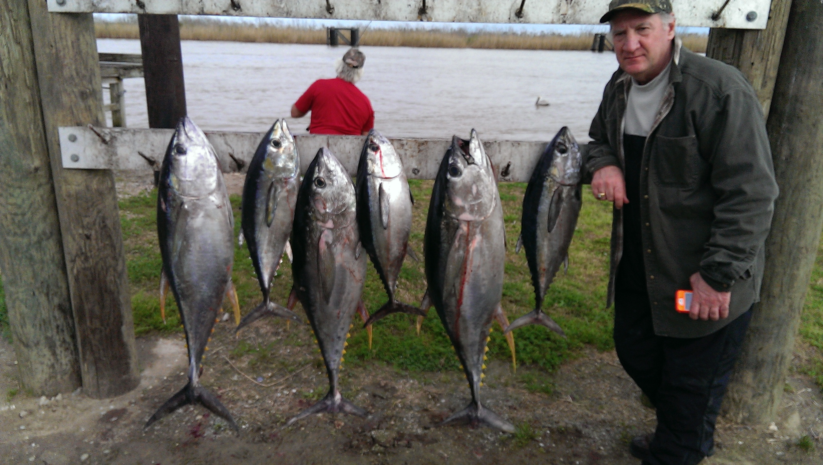 Summer is here and so are the fish venice louisiana for La fishing charters