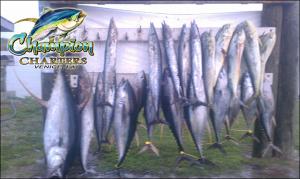 Champion Fishing Charters Venice