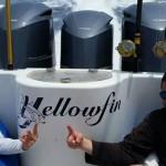 Yellowfin Fishing Charters