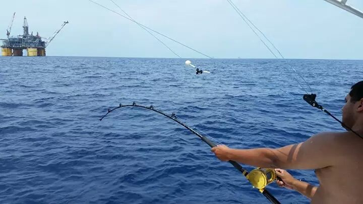 Venice fishing report from july 22 venice louisiana for Louisiana fishing blog