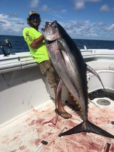 Huge Yellowfin