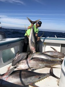 Fishing Tuna Fish in Sea