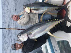Catching Tuna Fish