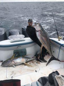 Tuna Fishing Venice