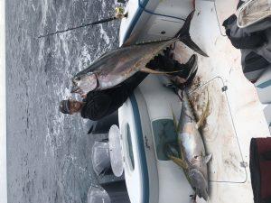Tuna Fish Catch