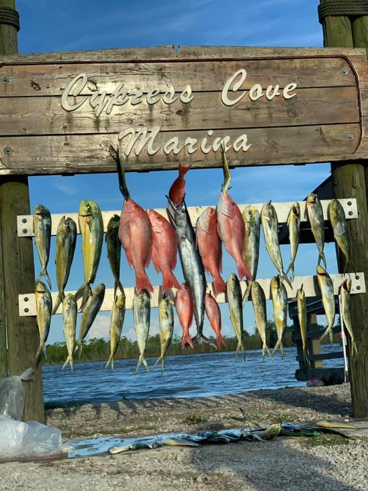 best fishing charters venice